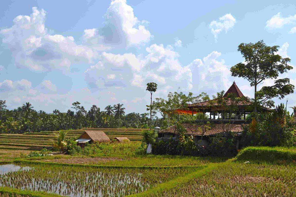 5 Day Bali Itinerary Spend Holiday Lifetime Designing Breakfast Nooks
