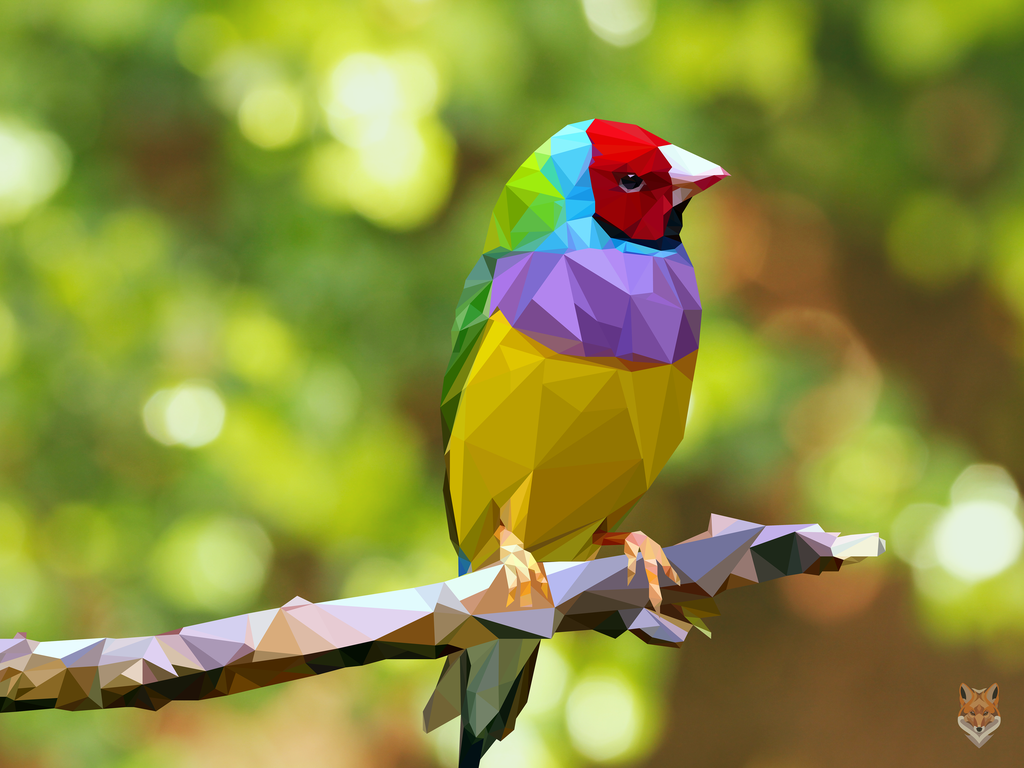 Colorful Bird 25 Idea Colorful Bird Pretty Staining Kitchen Cabinets Ideas