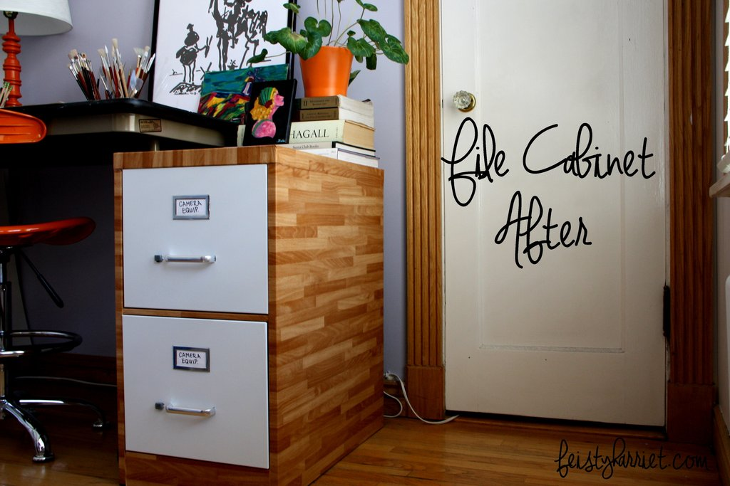 File Cabinet Redo Feisty Harriet 2 Drawer Lateral File Cabinet Wood