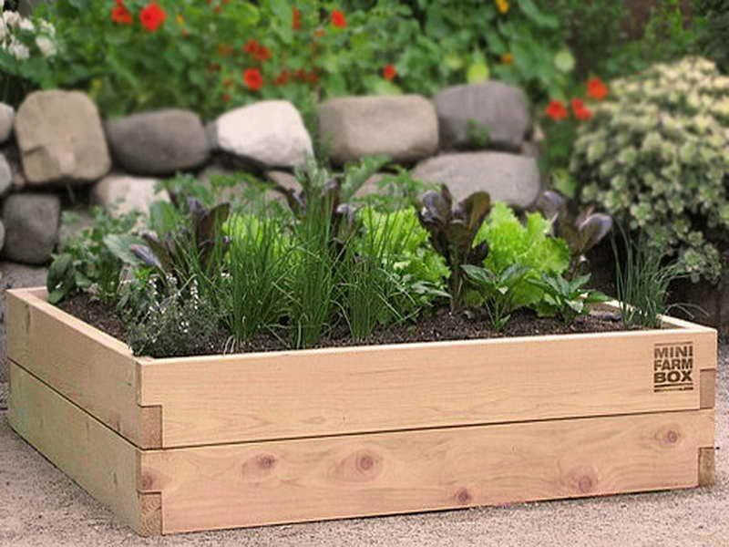 Gardening Landscaping Mini Garden Box How To Build A Wood Twin Bed Frame