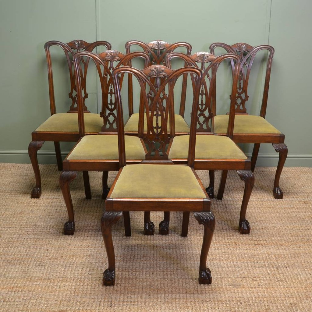 Set Chippendale Design Antique Dining Chair How To Repair Rattan Dining Chairs