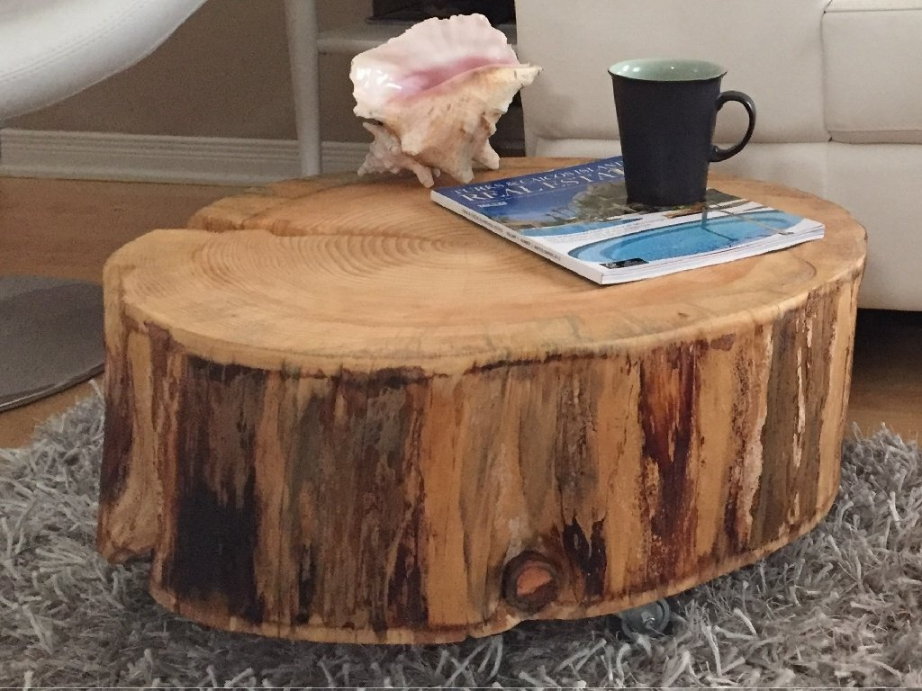 Tree Trunk Coffee Table Gbvim Makeover Great Idea Making Tree Stump Coffee Table