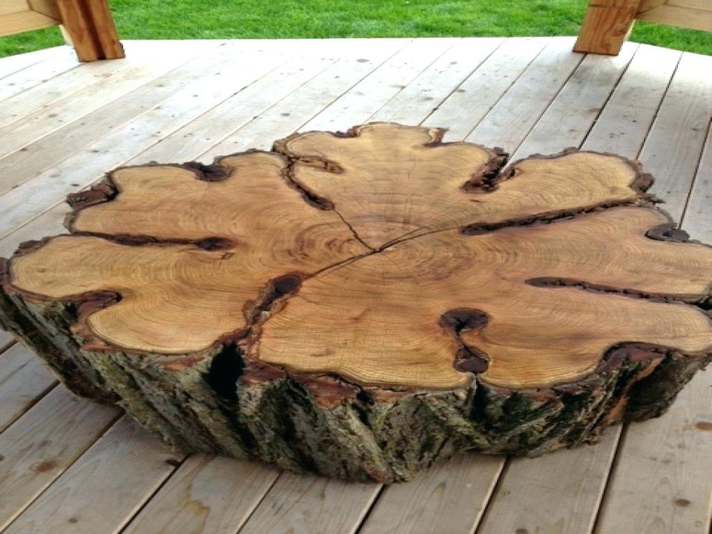 Tree Trunk Coffee Table Tree Stump Attractive Making Tree Stump Coffee Table