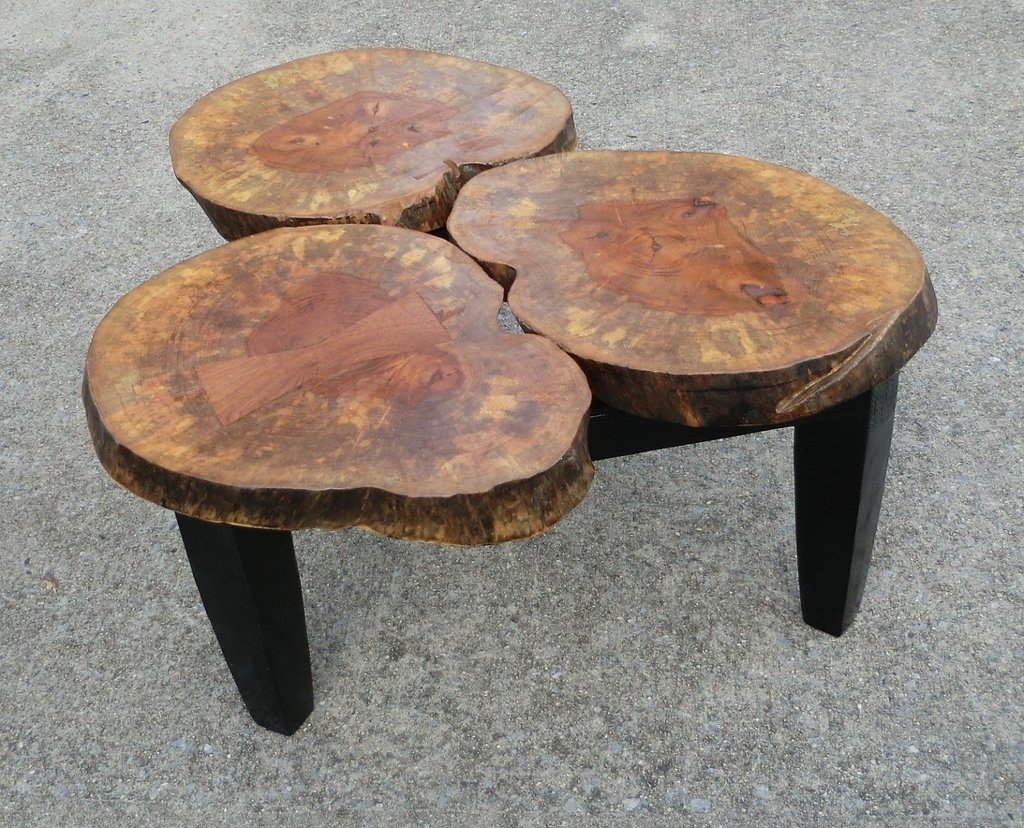 Wood Stump Coffee Table Home Idea Collection Make A Tree Trunk Coffee Table