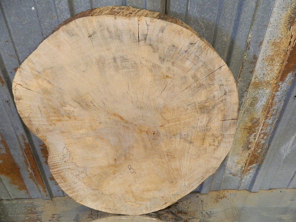 Wood Table Top Spalted Maple 34 Quot Diameter Circle How To Build Round Wood Table Tops