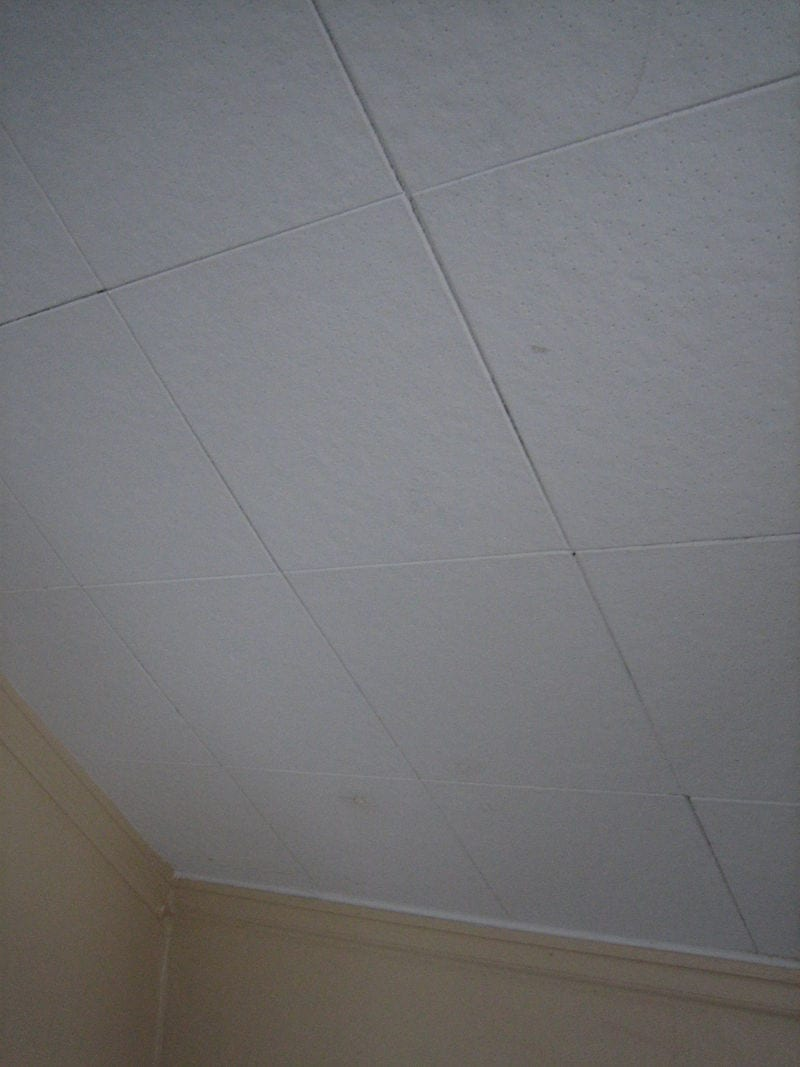 Asbestos Ceiling Tiles 12x12 Loccie Better Homes Gardens