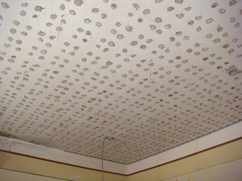Asbestos Ceiling Tiles Pictures Loccie Better Homes Gardens Ideas