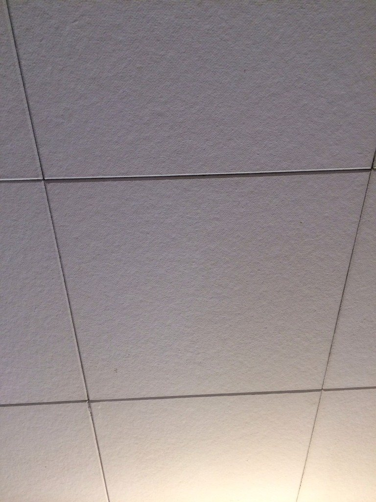 Asbestos Ceiling Tiles Tips Loccie Better Homes Gardens Ideas