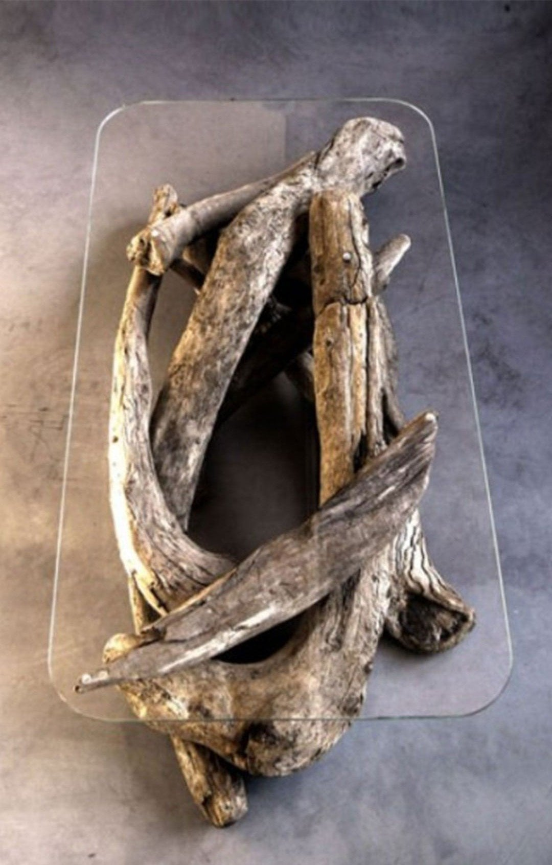 Best Driftwood Coffee Table