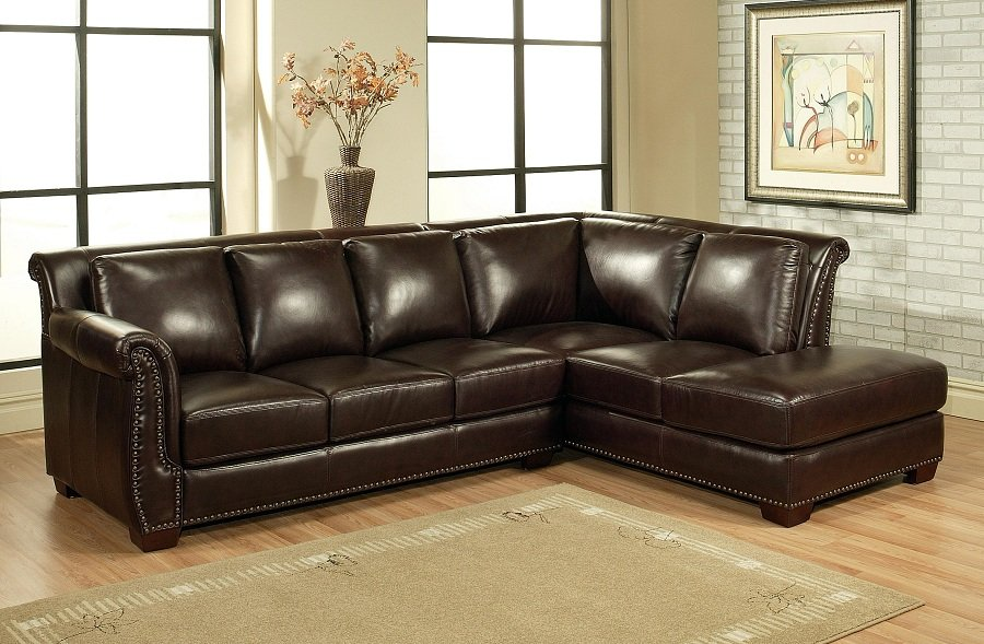 Cute Sectional Leather Sofas