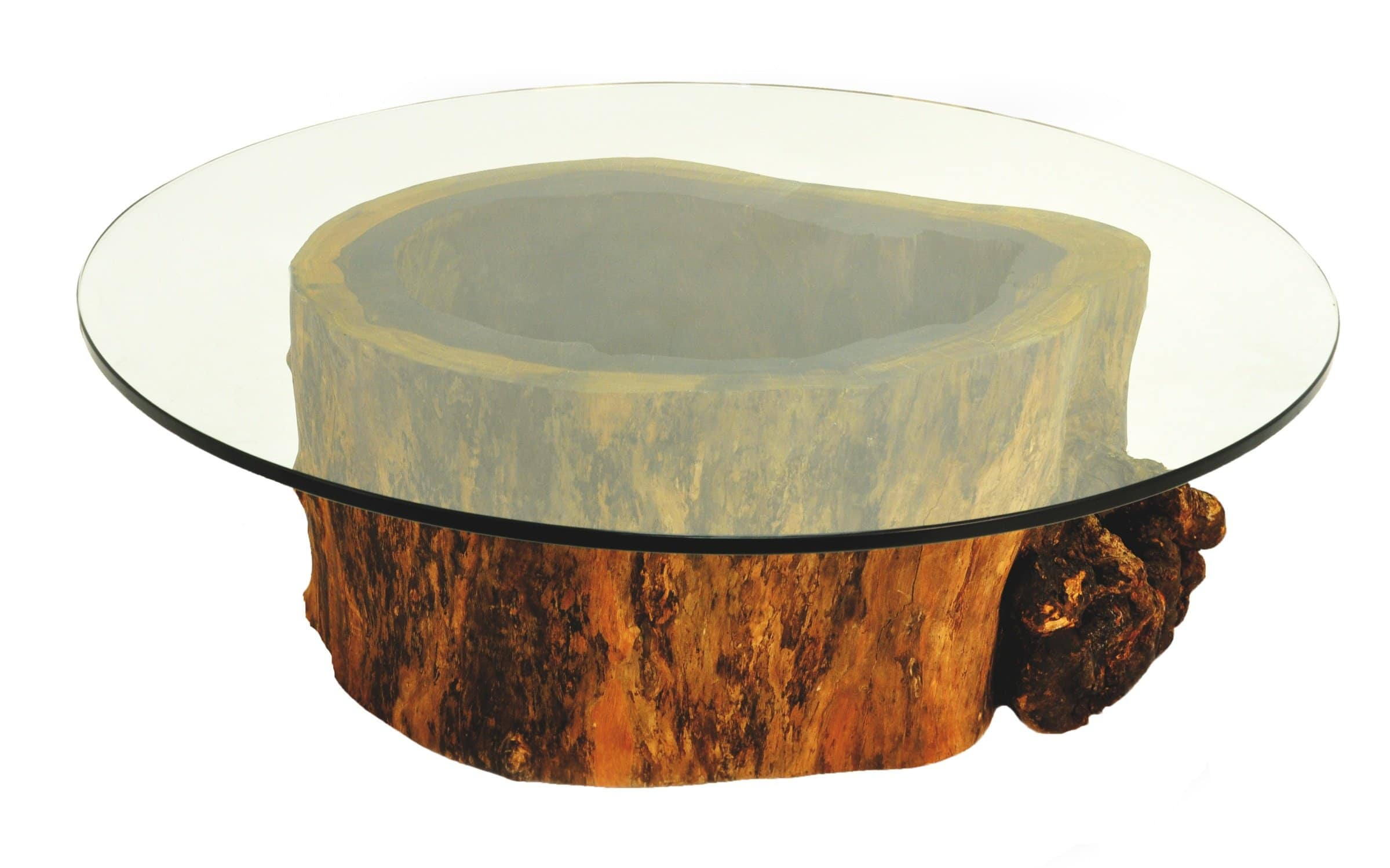 Glass Top Tree Stump Coffee Table
