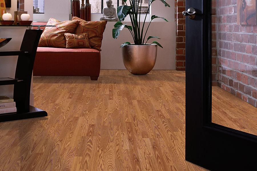 Installing Harvest Oak Laminate Flooring Loccie Better