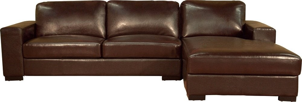 Ideas Leather Sectional Sleeper Sofa