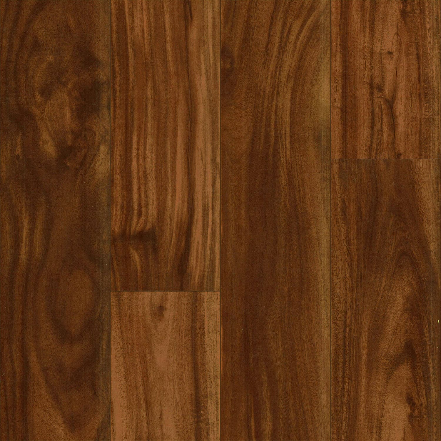 Acacia Laminate Flooring Of All Kinds Loccie Better