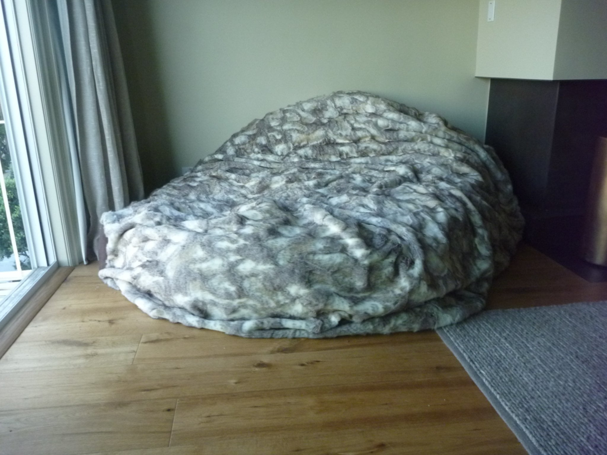 The Faux Fur Bean Bag Chair Picture